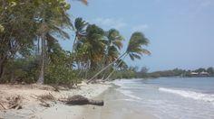 Les Salines, Martinique