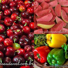 Conheça Alimentos Ricos em Vitamina C