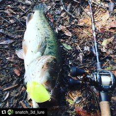 #Repost @snatch_3d_lure with @repostapp.  プロトギルで釣ってますわぁ  #スナッチ #おかっぱり #陸っぱり #ハンドメイドルアー #エアブラシ #バスフィッシング  #バス釣リ  #ルアー #ビックベイト #3Dプリンター #ルアーフィッシング #ブラックバス #野池 #Snatch  #fishing  #handmadelure  #lure  #bass  #bigbait  #bassfishing  #3dprint  #3dprinter  #3dprinting  #japan #replicator2x #largemouth #largemouthbass by s_a.k_u