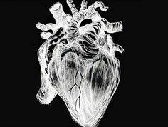 Have a nice day  #haveaniceday #hello #heart #blackandwhite #mutilation #drawing #suicide #staystrong #beautiful #depressed #depression #americanhorrorstory #ahs #tatelangdon #evanpeters #myheart #brocken #weird #psycho #psychedelic #crazy #cry #inlove #love #mind #soul #iloveyou #schizophrenia - http://ift.tt/1VH9ijQ