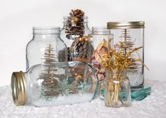 From terrariums to lanterns to vases to snow globes, HGTV Gardens presents clever ways to repurpose and decorate with mason jars.