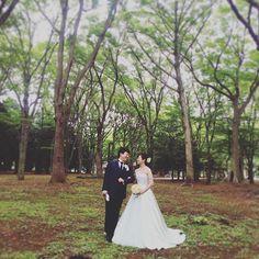 【ecoophoto】さんのInstagramをピンしています。 《【現場からお届けします!】 爽やかなミントグリーンのドレス。 木々に囲まれてまるで森林にいるみたいです♡あー素敵っ!  #ecoo #前撮り #結婚式 #ロケーション #代々木公園 #photo #森 #カラードレス》
