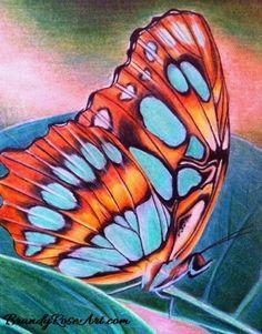 Malachite Butterfly in Prismacolors from www.brandyroseart.com