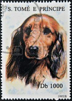 SANTO TOMÉ Y PRÍNCIPE -  1.995  Un sello impreso en Santo Tomé muestra un perro Dachshund.