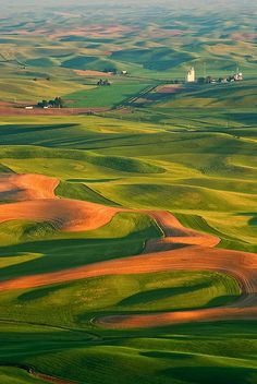 Palouse, Steptoe, Washington