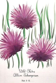 'Original painting, Wild Chives ~ Allium Schoenoprasum' is going up for auction at  3am Wed, Jun 6 with a starting bid of $20.