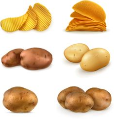 Free Potatoes and Potato Chips Vector Graphics (8,7MB) | EPS file | freedesignfile.com
