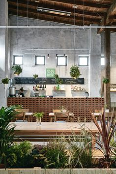 Wild Herb Cafe for Helsinki Design Week 2015 | Joanna Laajisto