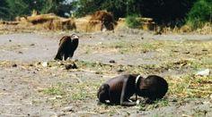 Carestia L'immagine terribile e drammatica del Sudan in ginocchio (Credits: Kevin Carter)