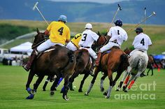 Five In Polo Line by Susana Bonadea Sport Of Kings, Polo Club, Matching Games, Horn, Equestrian, Big, Wall, Sports, Animals