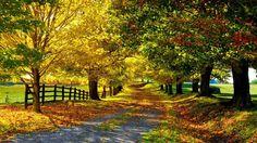 paisaje de otoño cabaña - Buscar con Google