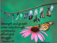 Strength and growth come through continuous effort and struggle.