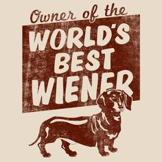 Dedicated to my Frodo, dachshund extraordinaire!