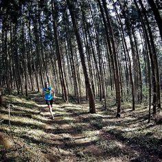 Letzter Long-Run vor #Istria100  mein erster Ultratrail  ist nun weniger als eine Woche entfernt und ich fühle mich unvorbereitet  zudem war mein letzter langer Lauf ab Kilometer 2 eine Qual und ich habe das Gefühl dass ich schlecht regeneriere  Dabei lief die Vorbereitung super keine Verletzung ca. 800 Kilometer  und dabei noch Halbmarathonbestzeit rausgehauen. Jetzt kann ich nur hoffen dass ich kommende Woche beim Tapering gut regeneriere und fit für den Lauf werde Drückt mir die Daumen…