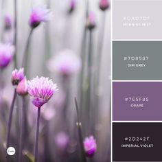 Best Bedroom Colors Schemes – My Life Spot Purple Color Schemes, Paint Color Schemes, Colour Pallette, Bedroom Color Schemes, Color Combos, Logo Design, Web Design, Corporate Design, Grey Purple Paint