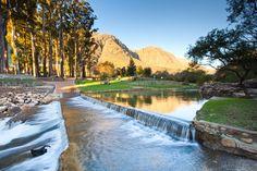 Water week 2017:  Nature's Water Factory http://cstu.io/a37a0c