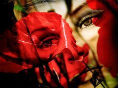 'Looking at the poppies' von Gabi Hampe bei artflakes.com als Poster oder Kunstdruck $23.56