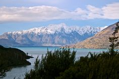 A Washington couple travels to New Zealand and falls in love with its many gorgeous sites and sights.