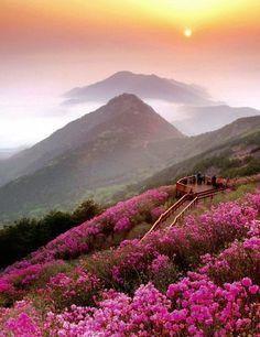 清州山,昌原, China.
