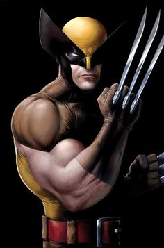 thehappysorceress: Classic Wolverine by Jeremy Roberts (X-Men - Marvel conics) Marvel Wolverine, Hq Marvel, Logan Wolverine, Marvel Dc Comics, Marvel Heroes, Comic Book Characters, Marvel Characters, Comic Character, Comic Books Art