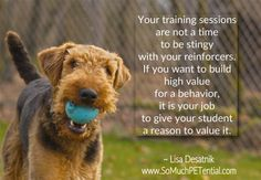 Cincinnati dog training tip - be generous with your reinforcers