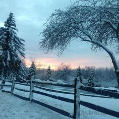 Neve no Campo
