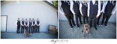 Langley & Vancouver Wedding & Engagement Photographer. Meg Kristina Photography. Triple Swaan Nursery, Abbotsford BC. Katie James, Abbotsford Bc, Vancouver Wedding Photographer, Sunny Days, Wedding Engagement, Nursery, Wedding Photography, Wedding Shot, Day Care