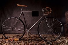 Fixie from France