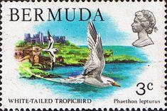 Bermuda 1978 Wildlife SG 387 Fine Mint Scott: 363 Other Bermuda Stamps HERE