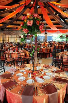 Brookfield Zoo is not just for animals anymore.The Pavilions offer a truly unique way to host your next event! Note: SO Pretty for a Fall Wedding! Traditional Wedding Decor, African Traditional Wedding, Fall Wedding, Wedding Reception, Wedding Venues, Wedding Ideas, Wedding Cakes, Wedding Ceremonies, Wedding Photos