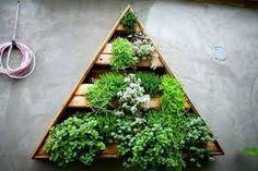 Image result for living herb walls