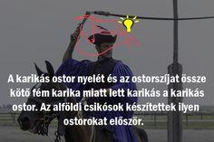 #csikós #ostor #hortobágy #nyeregbefel