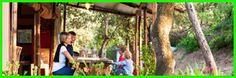 #CAMPINGVILLAGELECAPANNE Un'oasi per famiglie nella campagna toscana Bar e ristoranti, minimarket, campi da tennis, beach volley, campo scuola da golf e piscina. Poi, ordinate distese di piazzole per tende, camper e caravan, deliziose corti di case mobili, diverse per metratura e servizi.  La nuovissima tenda Populonia è una novità del 2015 bellissima tenda, ampia confortevole in grado di ospitare due nuclei familiari insieme