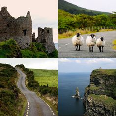 Go to Ireland and soak in all of the Emerald Isle's natural beauty for your destination honeymoon or wedding!