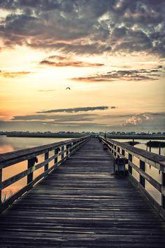 Marsh Walk Murrells Inlet Myrtle Beach Vacation, Myrtle Beach Sc, Vacation Spots, Carolina Beach, South Carolina, Murrells Inlet Sc, Pawleys Island, Edisto Island, Sites Online