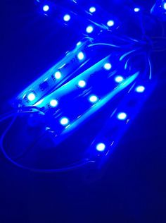 20 Pack New PHC Marine Large Blue 12 Volt Waterproof Led Courtesy//Utility Lights