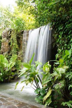 Waterfall in Botanical Garden