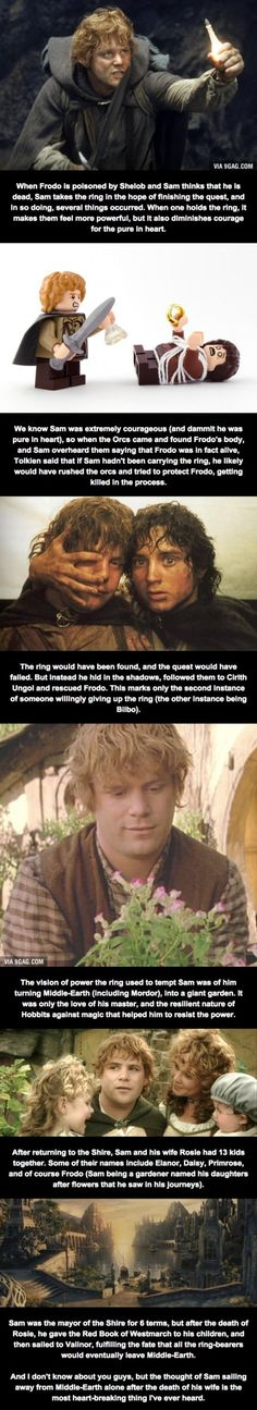 Relatively Unknown LoTR Facts (Part 4) - Samwise The Brave - 9GAG