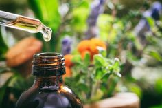 16 Effective Essential Oils for Scars (and Three Healing Oil Blends) Hyssop - recipe with lavender, geranium, rosemary. Essential Oils For Congestion, Carrot Seed Essential Oil, Helichrysum Essential Oil, Cedarwood Essential Oil, Geranium Essential Oil, Frankincense Essential Oil, Eucalyptus Essential Oil, Tea Tree Essential Oil, Lemon Essential Oils