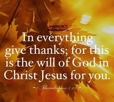 Bible Qoutes, Jesus Quotes, In Everything Give Thanks, Scripture Pictures, Scripture Verses, Scriptures, Amplified Bible, The Lord Is Good, Life Guide