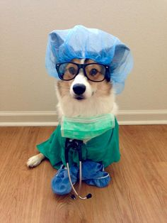 The Doctor is in....