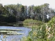 Robert H. Long Nature Park   The Charter Township of Commerce, Michigan... look into trails here