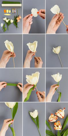 80 fresh spring ideas for making tulips crepe paper make tulips yourself white red basteln dekoration garten hintergrundbilder garden photography roses Paper Flower Patterns, Paper Flower Art, Paper Flowers Craft, Paper Flower Tutorial, Flower Crafts, Paper Crafts, Origami Flowers, Flower Garlands, Paper Toys