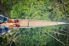 The thrilling 200m-long Canopy Walkway in the Forest Research Institute of Malaysia (FRIM) hangs a vertigo-inducing 30m above the forest floor. (Image by Isaac Leon)