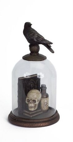 Halloween Cloche Spell Books Skull Potions Bottle Under Crow Topped Glass Dome