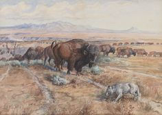 Name: Guardian of the Herd (Nature's Cattle; Buffalo Herd; Before the White Man Came) | Artist: Charles M. Russell Media: Watercolor, pencil & gouache on paper | Year(s): 1899