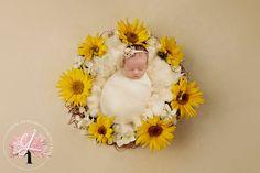 Newborn Monthly Photos, Newborn Pictures, Baby Pictures, Newborn Photography Poses, Newborn Poses, Newborn Shoot, Sweet Baby Photos, September Baby, Winter Newborn