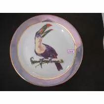 #5938# Prato De Parede Decorativo Porcelana Dd, Tucano!!!