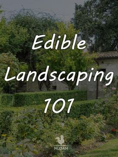 255 best taf edible landscaping images on pinterest growing