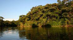 Parque Nacional Natural La Paya | Parques Nacionales Naturales de Colombia